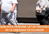 obesidad en ecuador