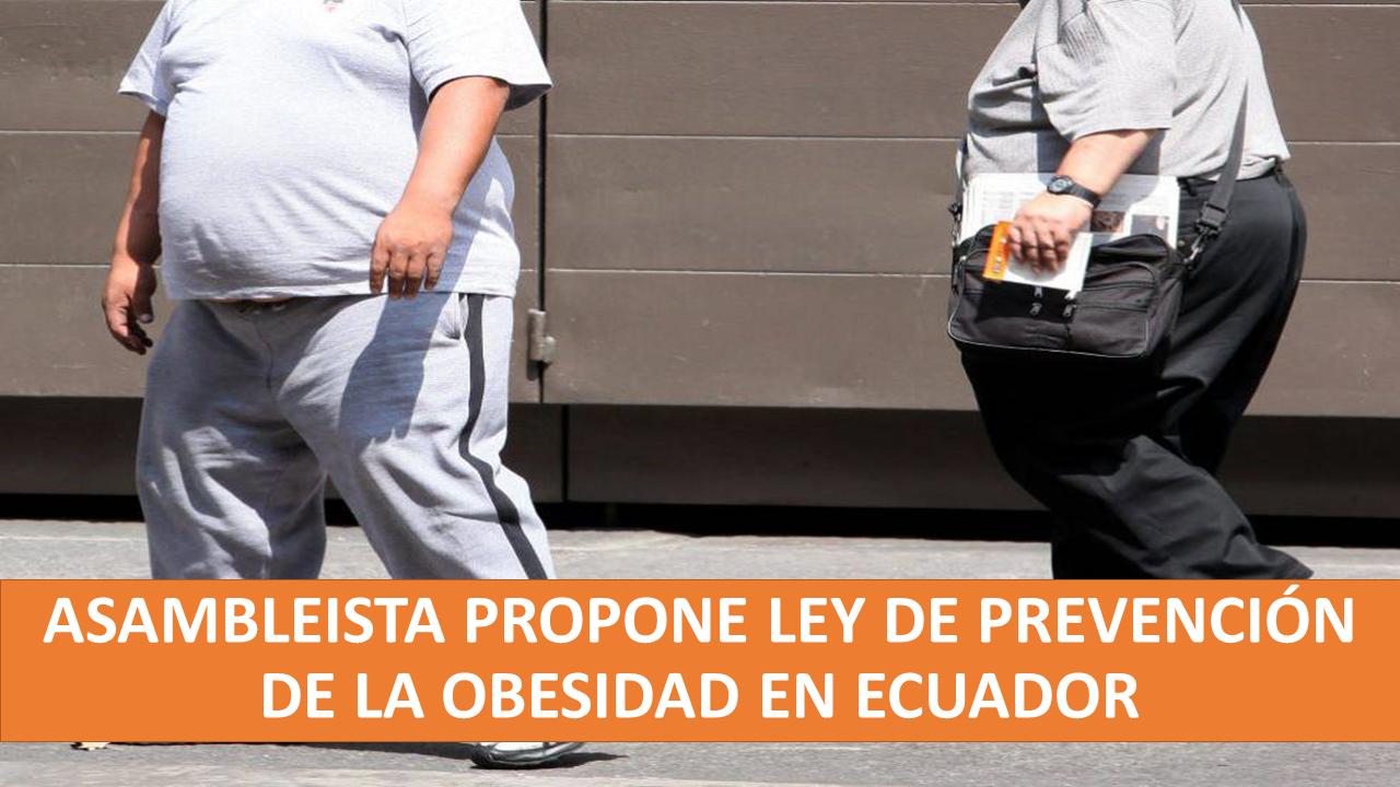 Ley para prevenir la obesidad en Ecuador