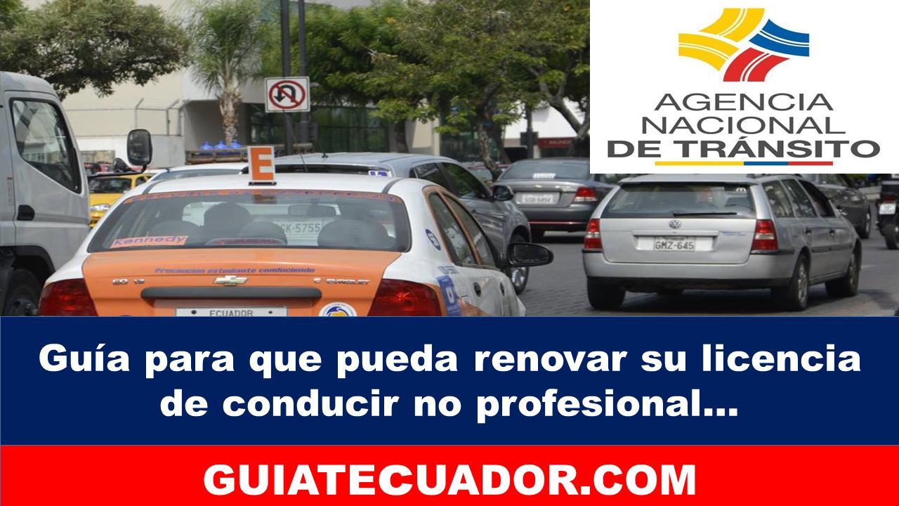 Guía para renovar su licencia de conducir no profesional