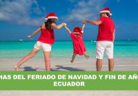 Feriado por navidad y fin de año