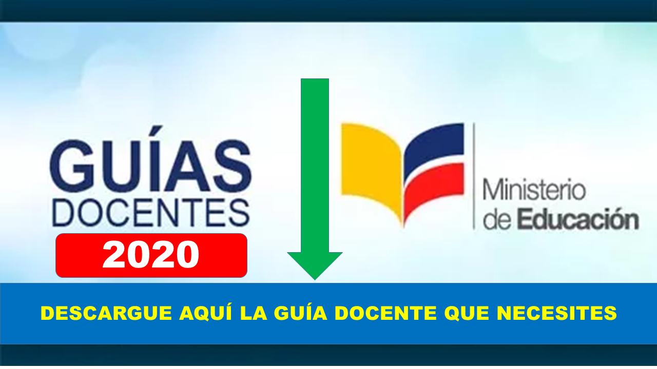 Guías para docentes de todos los años básicos y materias 2020