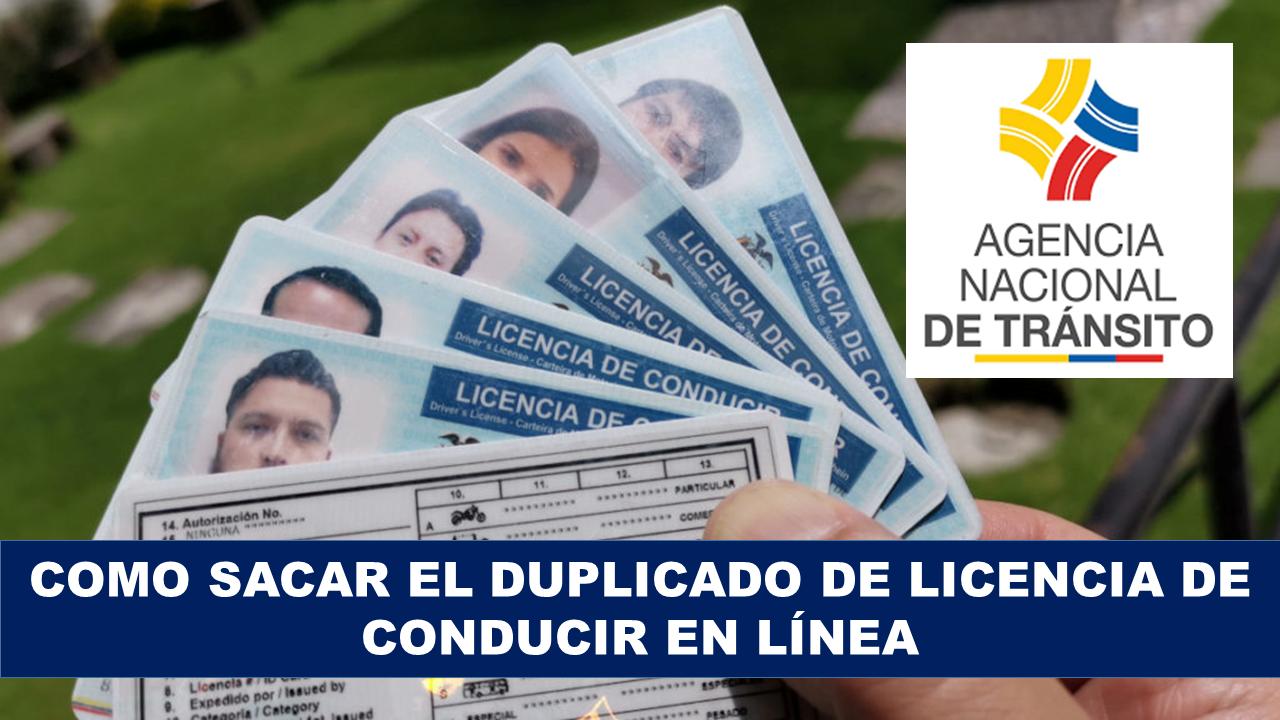 Como Sacar el Duplicado de Licencia de conducir en Línea