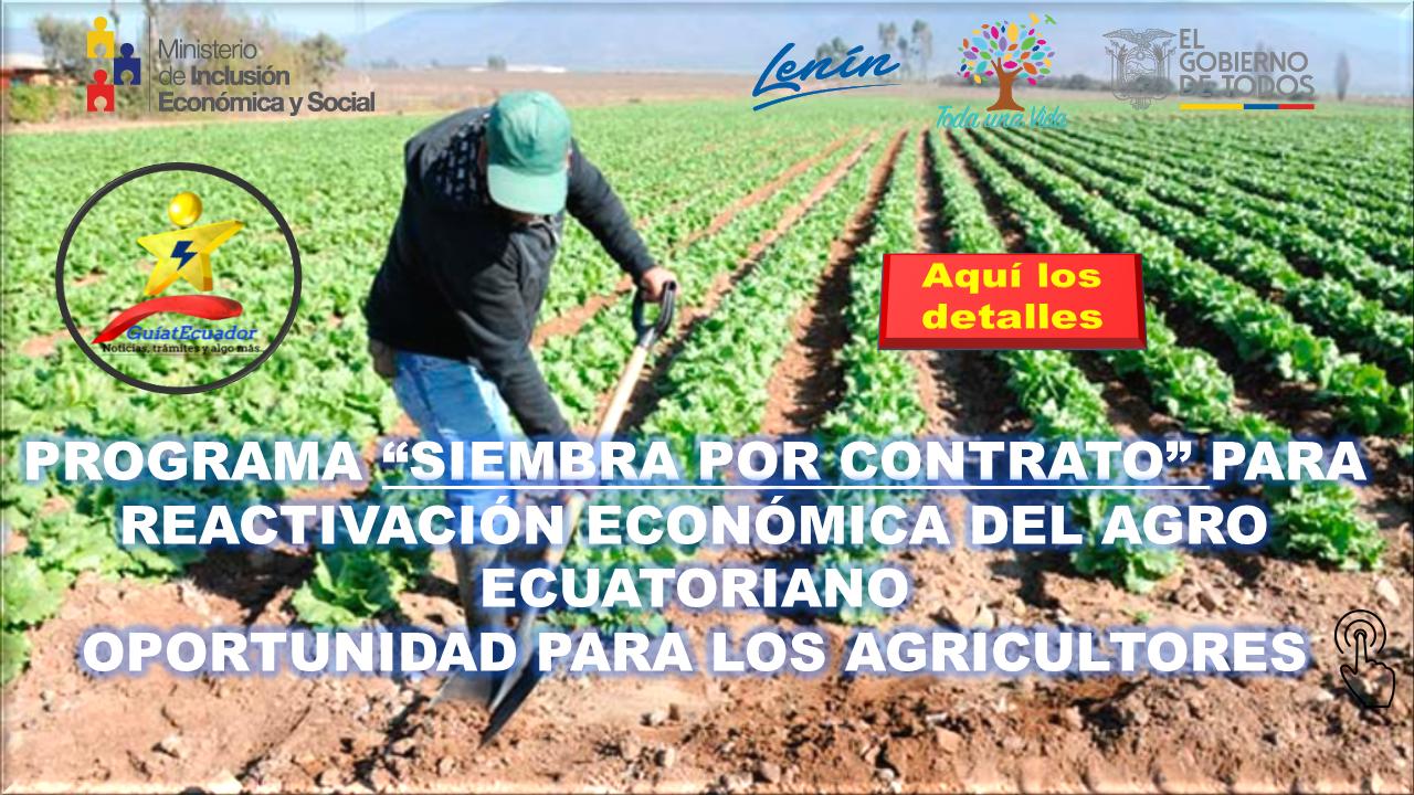 """Programa """"Siembra por Contrato"""" para Reactivación Económica del Agro Ecuatoriano"""